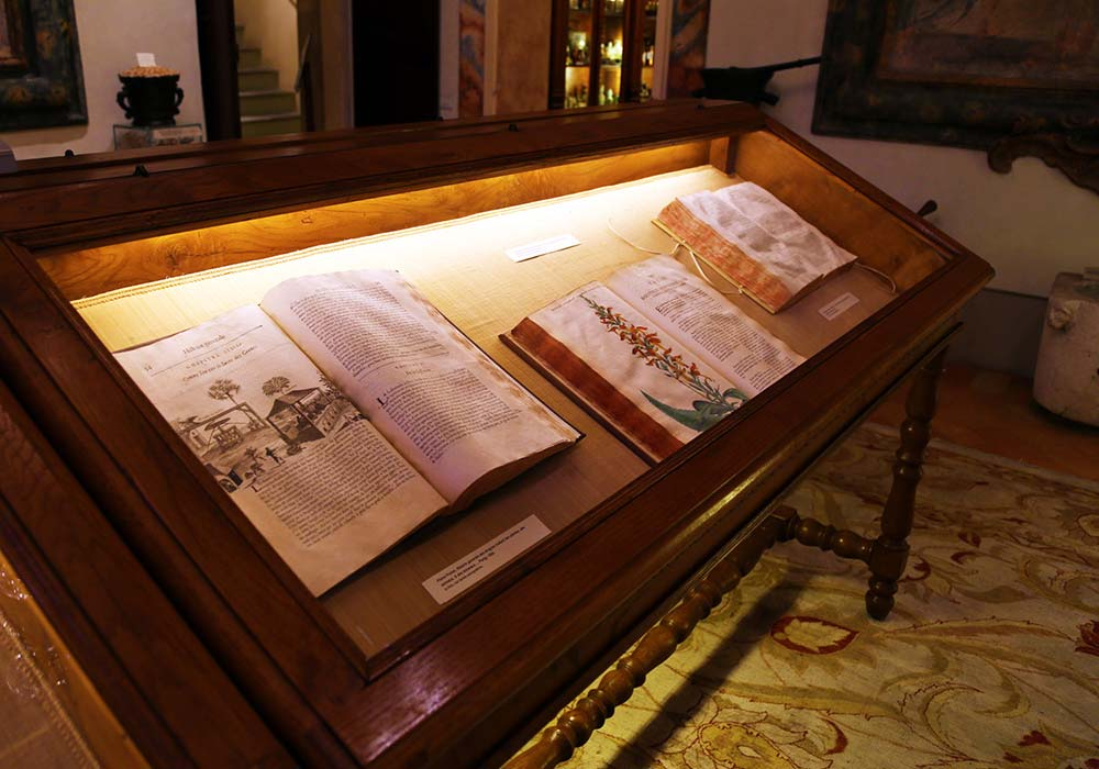 La sala dei Libri Antichi